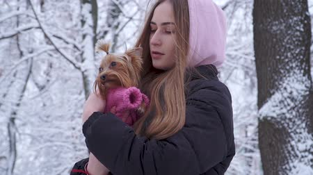 yorkie : Portrait cute teen girl with long hair covered with a hood hugging a yorkshire terrier dressed in wool sweater holding dog on hands in a winter snow-covered park Teenager and a pet on a walk outdoors Stock Footage