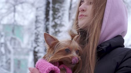 yorkie : Portrait beautiful teen girl with long hair hugging a yorkshire terrier dressed in wool sweater holding dog on hands in a winter snow-covered park. Teenager and a dog on a walk outdoors. Slow motion.