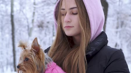 yorkie : Portrait cute teen girl with long hair hugging a yorkshire terrier dressed in wool sweater holding dog on hands in a winter snow-covered park. Teenager and a dog on a walk outdoors. Slow motion.