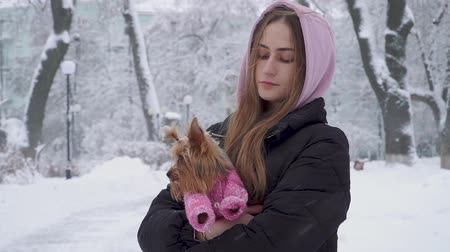 yorkie : Portrait cute teen girl with long hair hugging a yorkshire terrier dressed in wool sweater holding dog on hands in a winter snow-covered park. Teenager and a dog on a walk outdoors. Snowing.