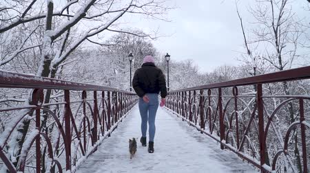 yorkie : Woman resting with small yorkshire terrier outdoors. Yorkie running on leash with owner on the bridge in a winter snow-covered park. Slow motion.