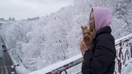 yorkie : Portrait pretty young girl holding a yorkshire terrier standing on the bridge on a background of snow covered trees in a winter park. A teenager and a dog on a walk outdoors. Slow motion. Stock Footage