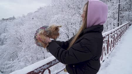 yorkie : Cute young girl holding a yorkshire terrier standing on the bridge on a background of snow covered trees in a winter park. A teenager and a dog on a walk outdoors. Slow motion. Stock Footage
