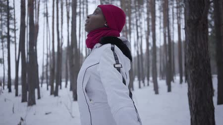olhares : African american girl spinning around looking up in winter forest. Beautiful girl in warm jacket spread her arms to the side, she admires the snow. Snow falls on womans face Vídeos