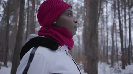 movimentar se : African american girl standing in winter forest looking straight. Beautiful girl in warm jacket spending time outdoors. Camera moves around, spinning near woman Vídeos