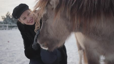 ranč : A beautiful girl in a winter coat strokes a wonderful pony on a country ranch. Horses walk outdoors in winter weather. Dostupné videozáznamy