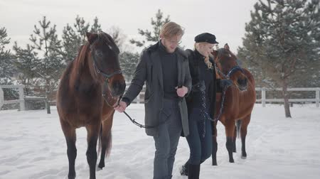 castanha : Young couple leading two brown horses talking at the snow winter ranch. Happy positive couple spend time outdoors at farm. Concept of horse breeding