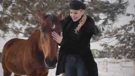 молодые женщины : Young blond woman petting face of beautiful brown horse at a ranch. Lady hugging and kissing animal. Girl in warm clothing spends time with horse in the winter paddock