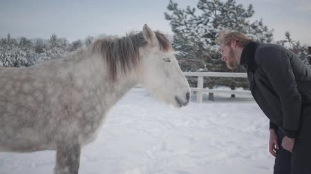 horse breeding : Bearded man with glasses teasing a horse. Joyful playful guy having fun with a horse on a country ranch in the winter season. Slow motion.