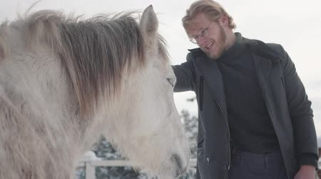 horse breeding : Portrait bearded guy with glasses strokes a beautiful white horse on a country ranch in the winter season. Slow motion. Stock Footage