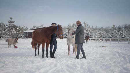 lő : The guy and the girl stroke horses on a country ranch in the winter season. A young couple walks outdoors on a farm with horses. Slow motion.