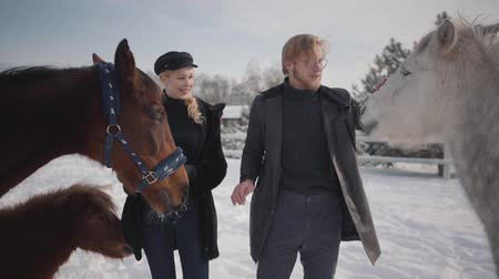 ranč : Portrait of a young couple stroking horses on a country ranch in the winter season. A man and woman walking with horses and ponies outdoors. Slow motion.