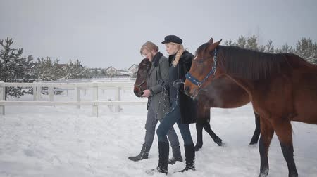 kanca : Handsome man and cute woman leading two brown horses talking at the snow winter ranch. Happy positive couple spend time outdoors at farm. Concept of horse breeding. Slow motion. Stock mozgókép