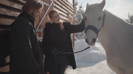 вести : Pretty blond woman and tall bearded man standing with white horse at the snow winter ranch. Girl strokes animal. Happy couple spend time outdoors at farm. Slow motion