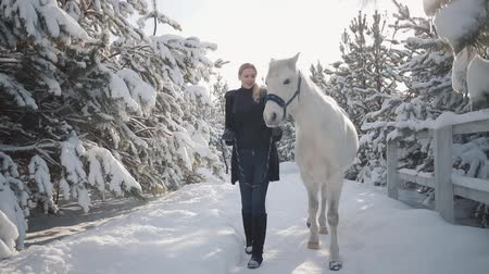 konie : Beautiful girl walks with horse in the snow winter ranch. Young woman leading her horse with his head collar talking to animal and smiling. Concept of horse breeding