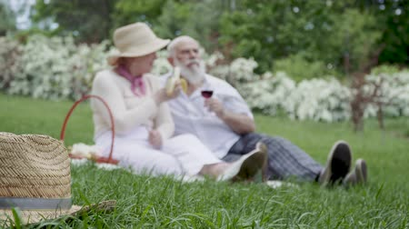 recreational park : Happy senior couple at the picnic in summer park Stock Footage