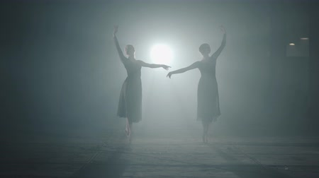 hangar : Two graceful professional ballerinas dancing elements of classical ballet in the dark. Ballet dancers shows classic ballet pas in spotlight on black background in studio. Stock Footage