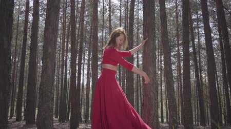 выражающий : Skilled cute woman in red dress dancing in the forest. Beautiful dancer showing ballet classic poses. Concept of female tenderness and harmony life. Spectacular impressive view.