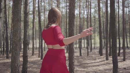 опытный : Portrait young woman in red dress dancing in the forest landscape. Lady touching a tree. Concept of female tenderness and harmony life. Spectacular impressive view. Contemporary dancer outdoors. Стоковые видеозаписи