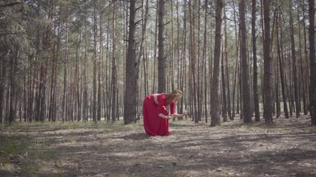 выражающий : Graceful young woman in red dress dancing in the forest. Beautiful dancer showing classic ballet poses. Concept of female tenderness and harmony life. Contemporary dancer practicing outdoors. Slow motion Стоковые видеозаписи