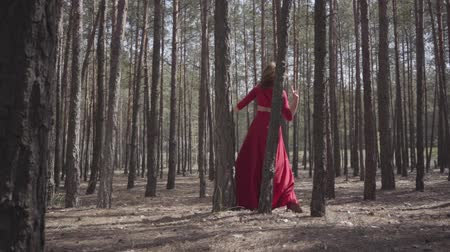 опытный : Flexible cute woman in red dress dancing in the forest. Beautiful lady touching a tree. Concept of female tenderness and harmony life. Spectacular impressive view. Slow motion