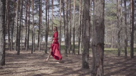 voetstappen : Beautiful woman in long red dress walking in the forest. Concept of female tenderness and harmony life. Spectacular impressive view. Slow motion.