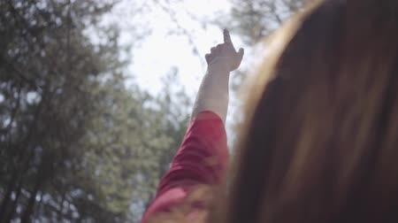 ağaç gövdesi : Graceful woman in the forest. Tender delicate lady raises hand in the sky. Slow motion.
