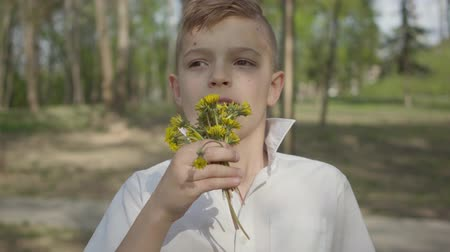 százszorszépek : Young boy with dandelion flowers waiting to give a bouquet for person. Outdoor recreation. Stock mozgókép