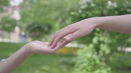 tener : Male and female hands touching each other in the foreground close-up. Beautiful green park on the background. Leisure outdoors, young couple have a date Archivo de Video