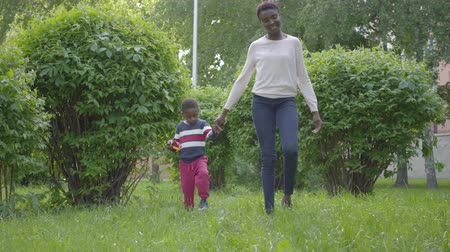 支出 : Attractive African American woman walking in the park with her little son, holding hands. Cute child spending time outdoors with his mother. Loving family, carefree childhood 動画素材