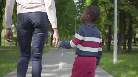 afro amerikan : Back view of unrecognizable African American woman walking in the park with her little son, holding hands. Cute child spending time outdoors with his mother. Loving family, carefree childhood Stok Video