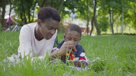 支出 : Portrait adorable cute African American pretty young woman lying on the blanket with her little son playing with a toy in the park. The young mother spending time with her child outdoors. Loving famil