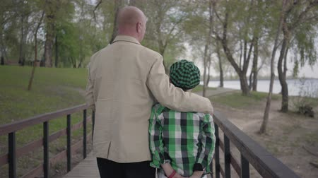 walk behind : Back view of grandfather and grandson walking on the bridge in the park with their backs to camera. The man hugs the child by his shoulders. Generations concept. Summertime leisure Stock Footage