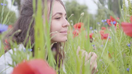 молодые женщины : Portrait of pretty girl sitting in poppy field. Connection with nature. Green and red harmony. Contrast colors in poppy. Blossoming poppies. Стоковые видеозаписи