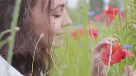 vlčí máky : Portrait of cute young woman sitting in poppy field. Connection with nature. Green and red harmony. Contrast colors in poppy. Blossoming poppies. Red poppy in the hands of the girl.