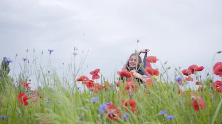 florescente : Pretty girl dancing in a poppy field holding flag of Germany in hands outdoors. Connection with nature, patriotism. Leisure in nature. Blossoming poppies. Freedom.