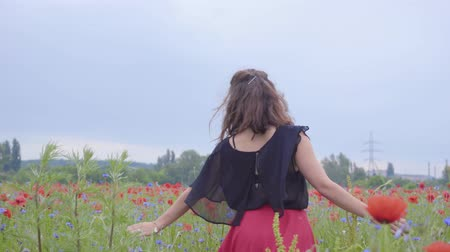 vlčí máky : Cute young girl running and dancing in a poppy field smiling happily. Connection with nature. Leisure in nature. Blossoming poppies. Freedom. Dostupné videozáznamy