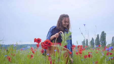 vime : Front view of pretty girl walking in poppy field gathering flowers in the wicker basket. Connection with nature. Green and red harmony. Leisure outdoors, summertime fun.