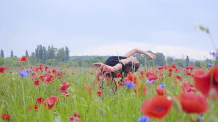 pole : Pretty girl dancing in a poppy field smiling happily. Connection with nature. Leisure in nature. Blossoming poppies. Freedom.