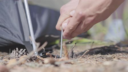 namiot : Male hands putting tent up close-up. Concept of camping. Leisure and journey to nature. Wideo