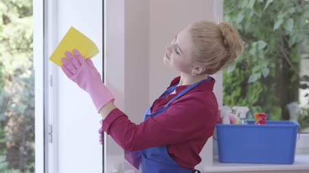 housekeeper : Pretty smiling blond girl in blue apron washing the window with window rag in the room. Cleaning day. Positive housekeeper cleans the house. Advertising Stock Footage