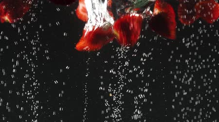 přirozeně : Falling fresh red slices of strawberries splashing into sparkling water on black background. Close up