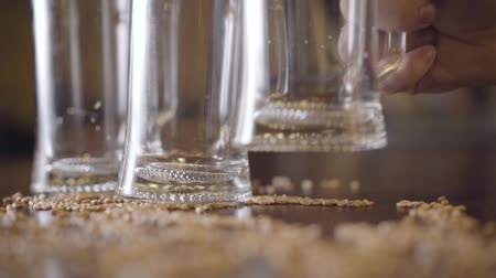 cidra : Two empty glass of beer standing on the table in the bar close-up. Male hand putting third glass on the table. Barley seeds lying next to the glasses. Natural beer making, bright taste of the product