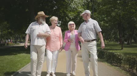 grandad : Two cute mature couples walking in the summer park talking and smiling. Double date of senior couples. Friendly company resting outdoors. Old men and women met together. Cheerful senior retired people