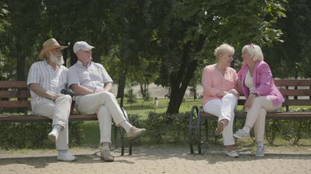 grandad : Two senior girlfriends in bright clothing and male friends sitting on the bench near each other in the summer park. Mature people resting outdoors. Cheerful senior retired people. Stock Footage