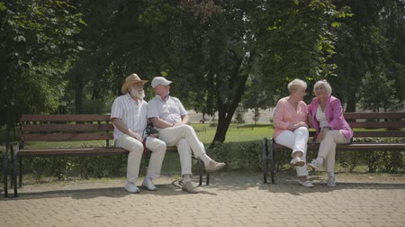 grandad : Two senior couples sitting on the bench near each other in the summer park. Mature people resting outdoors. Cheerful senior retired people. Stock Footage