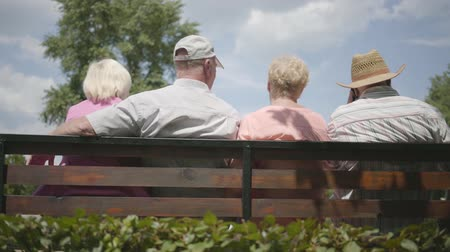 grandad : Two cute adult couples sitting on the bench and talking together. Mature people resting outdoors. Cheerful senior retired people. Back view. Slow motion. Stock Footage