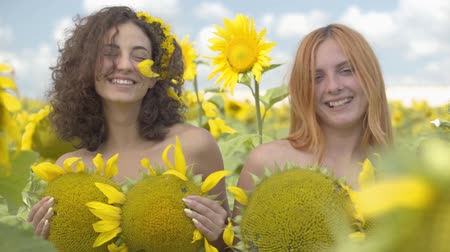 fragrances : Two beautiful girls looking at the camera smiling standing on the sunflower field covering bodies with sunflowers. Bright yellow color. Freedom concept. Happy women outdoors. Slow motion. Stock Footage