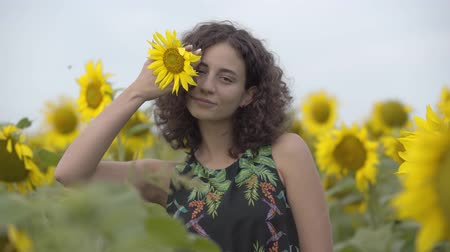 привлекать : Portrait of beautiful curly girl looking at the camera smiling and covering her eye with little sunflower in the sunflower field. Connection with nature. Rural life
