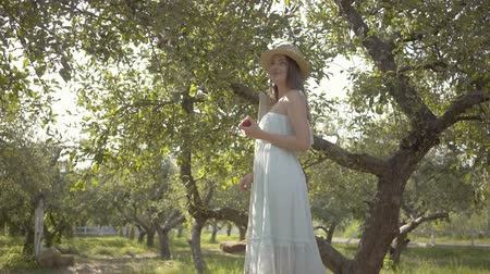apple park : Attractive young woman in straw hat and long white dress looking at the camera holding apple standing on a ladder in the green summer garden. Harvest time, rural lifestyle.